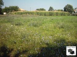 Regulated plot of flat land located in the village of Novo selo, 20 km from Veliko Tarnovo