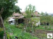 One-storey house with a yard and a garage in a nice, well-developed district in Veliko Tarnovo