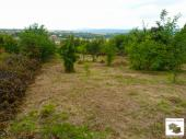 Big plot with building project located in the village of Belyakovets