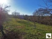 Large fenced plot with fruit trees, located in the village of Zaya, only 20 km south of Veliko Tarnovo