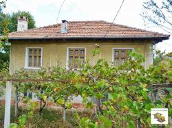 Two-storey house with a yard and outbuildings in the village of Pushevo, just 12 km from Veliko Tarnovo
